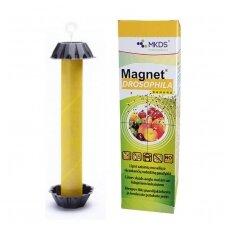 MAGNET Drosophila vaisinių muselių gaudyklė, 1 vnt