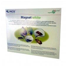 Magnet White-slyviniam pjūkleliams,avietinukui 20*25